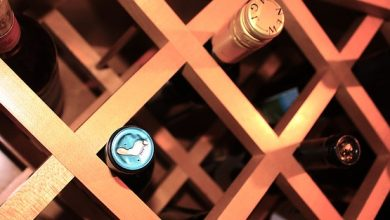 Sorprendenti vini sotto i 10€